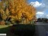 brachterbeek-2012111101