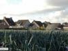 brachterbeek-2012111108