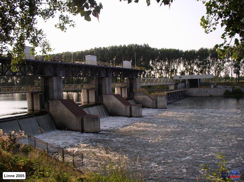 linne-20050718006
