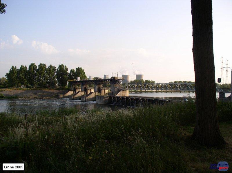 linne-20050718015