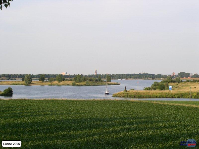 linne-20050718023