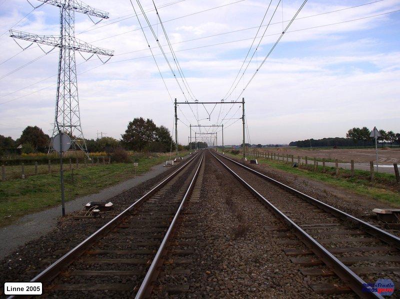 linne-20051028010