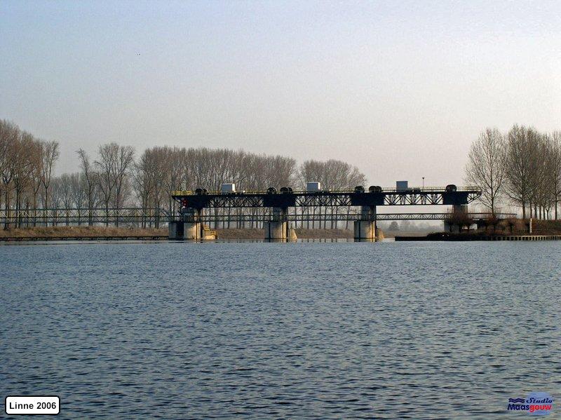 linne-200601001
