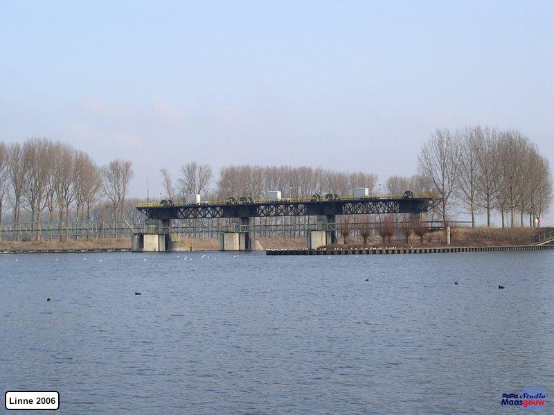 linne-200601016