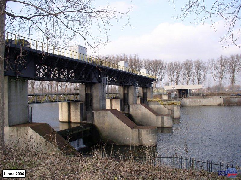 linne-200601029