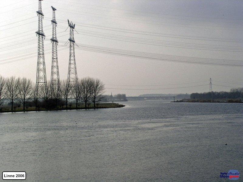linne-200601031