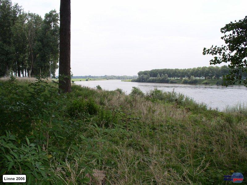 linne-200608016
