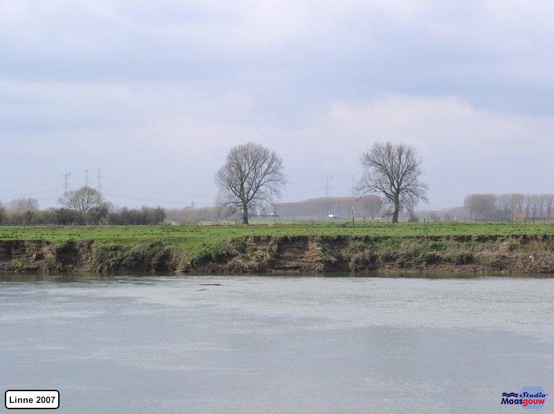 linne-200703007