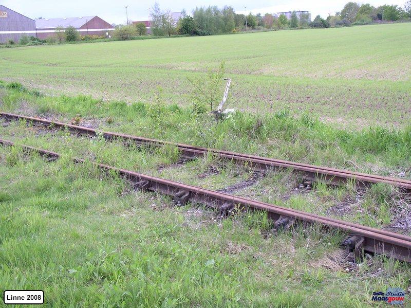 linne-20080501013