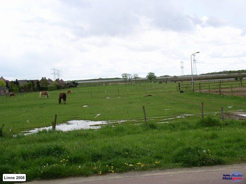 linne-20080501021
