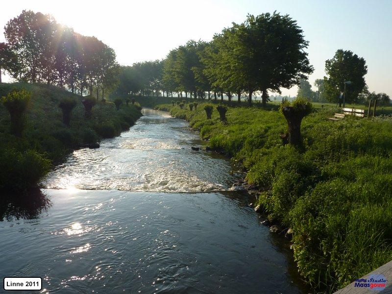 linne-20110505004