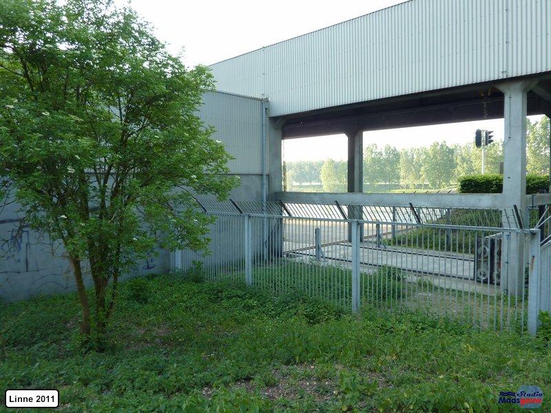 linne-20110505015