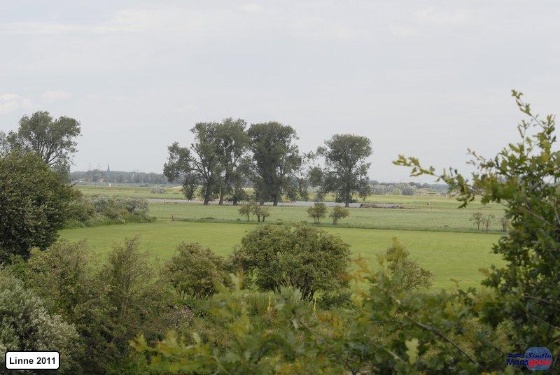 linne-20110716031