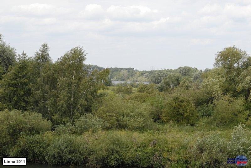 linne-20110716032
