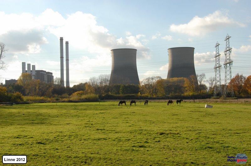 linne-2012111110