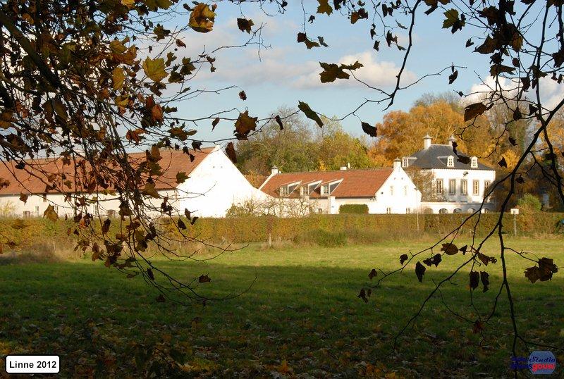 linne-2012111111