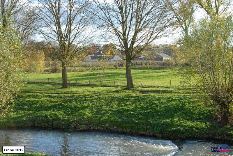 linne-2012111120