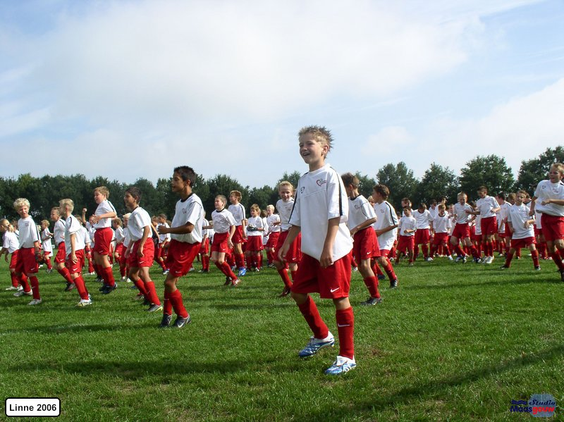 linne-rksv-200608038