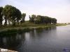 linne-20050718009