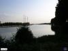 linne-20050718010