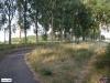 linne-20050718013