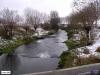 linne-20050928001