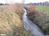 linne-20050928024