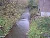 linne-20050928053