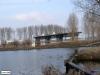 linne-200601013