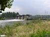 linne-200608013