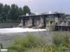 linne-200608014