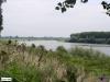 linne-200608015