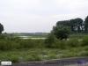 linne-200608018