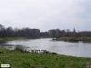 linne-200703001