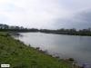 linne-200703005