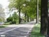 linne-20080501009