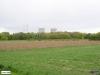 linne-20080501020