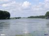 linne-20080501031