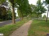 linne-20090510016