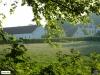 linne-20110505002