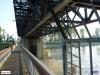 linne-20110505009