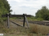 linne-20110716001