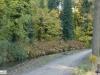 linne-2012111109
