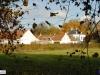 linne-2012111112