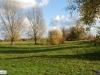 linne-2012111114