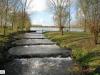 linne-2012111115