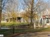 linne-2012111116