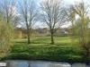 linne-2012111121