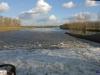 linne-2012111126