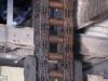linne-2012111127